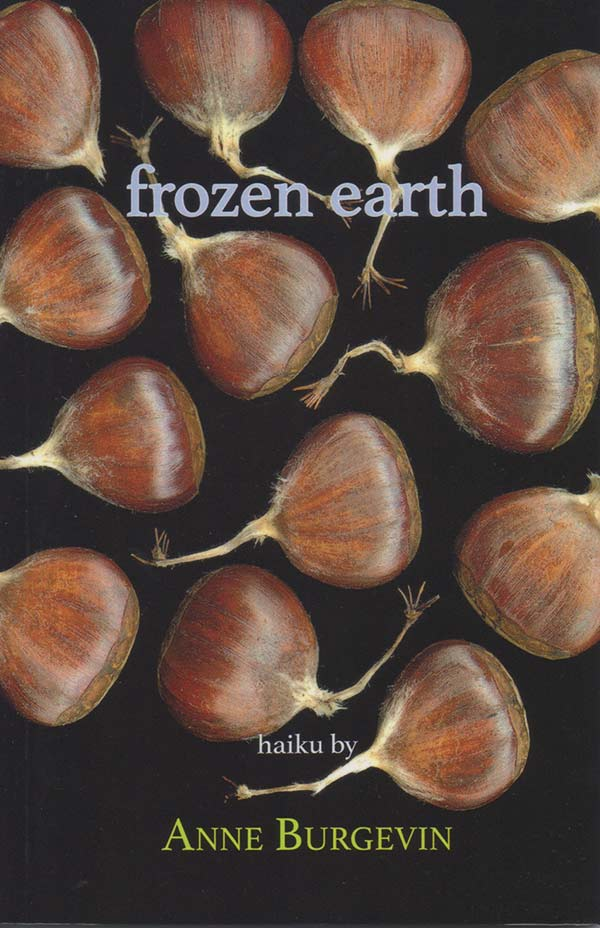 Frozen Earth, Haiku Of Anne Burgevin