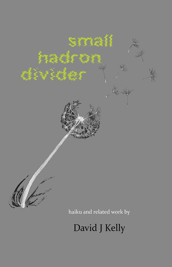 Small Hadron Divider, Haiku Of David J Kelly